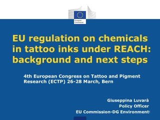 EU regulation on chemicals in tattoo inks under REACH: background and next steps