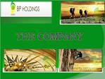 The Company | BP Holdings Investment Solutions