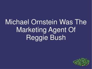 Michael Ornstein Was The Marketing Agent Of Reggie Bush
