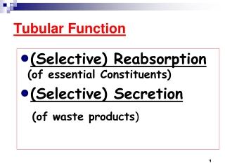 Tubular Function