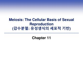 Meiosis: The Cellular Basis of Sexual Reproduction ( 감수분열 :  유성생식의 세포적 기반 )