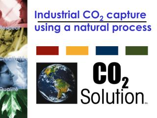 Industrial CO 2  capture using a natural process