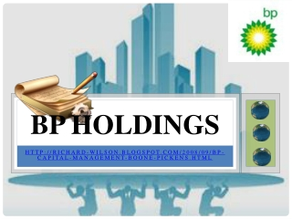 BP Capital Management, bp holdings sweden