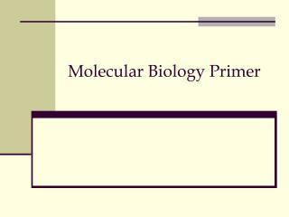 Molecular Biology Primer