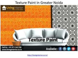 Texture Paint in Greater Noida