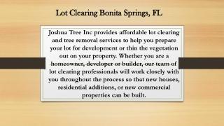 Lot Clearing Bonita Springs, FL