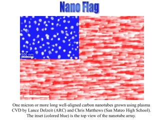 One micron or more long well-aligned carbon nanotubes grown using plasma CVD by Lance Delzeit (ARC) and Chris Matthews (