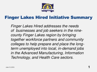 Finger Lakes Hired Initiative Summary