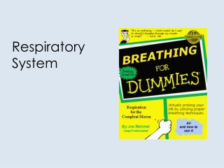 7. Mechanics of Breathing
