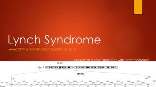 Transvaginal Sonography and Endometrium