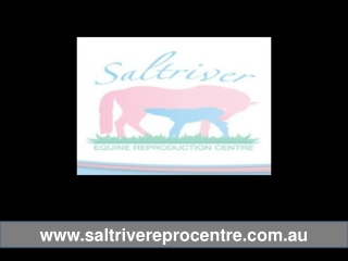 Saltriver Reproduction Centre - Facilities