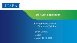 EU Audit Legislation
