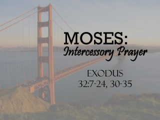 MOSES:
