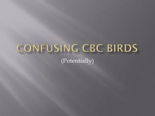 Confusing CBC Birds