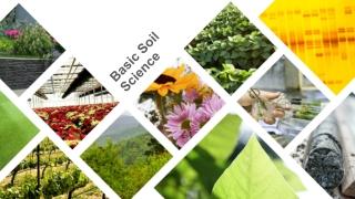 Basic Soil Science