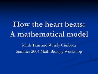 How the heart beats:  A mathematical model