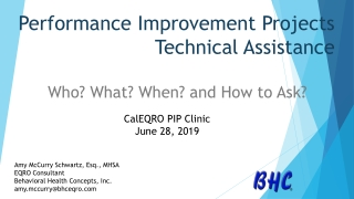 Performance Improvement Projects Technical Assistance