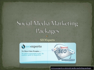 Social media marketing packages by SEOExperts
