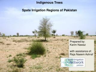 Indigenous Trees  Spate Irrigation Regions of Pakistan