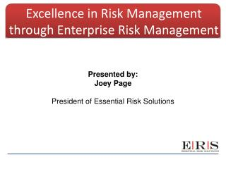 Excellence in Risk Management through Enterprise Risk Management