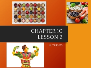 CHAPTER 10 LESSON 2