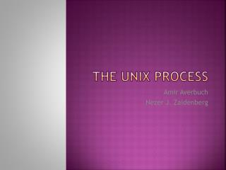 The UNIX process