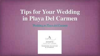 Tips for Your Wedding in Playa Del Carmen