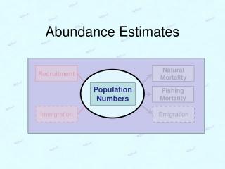 Abundance Estimates