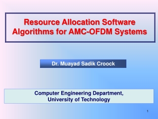 Resource Allocation Software Algorithms for AMC-OFDM Systems