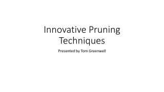 Innovative Pruning Techniques