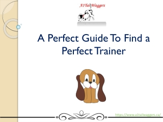 A perfect Guide to find a perfect trainer