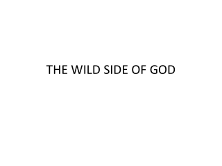 THE WILD SIDE OF GOD