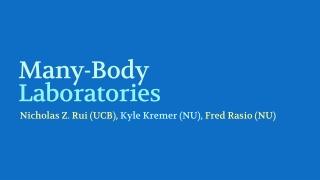 Many-Body Laboratories
