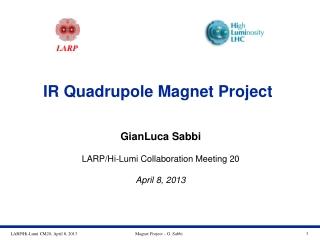 IR Quadrupole Magnet Project