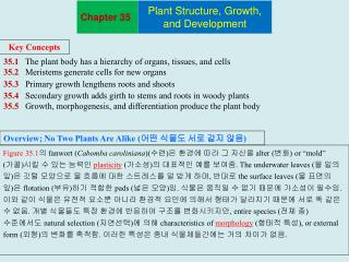 35.1    The plant body has a hierarchy of organs, tissues, and cells 35.2    Meristems generate cells for new organs