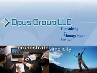 Consulting and Management Services Company Background