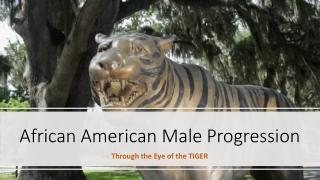 AfricanAmerican MaleProgression