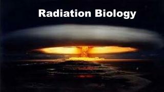 Radiation Biology