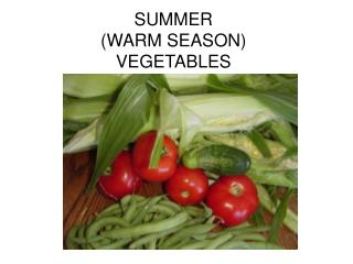 SUMMER (WARM SEASON)  VEGETABLES