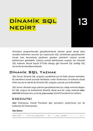 İleri Seviye T-SQL Programlama - Chapter 13