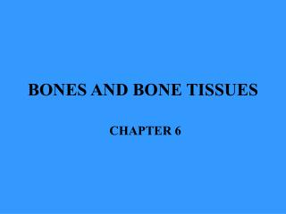 BONES AND BONE TISSUES