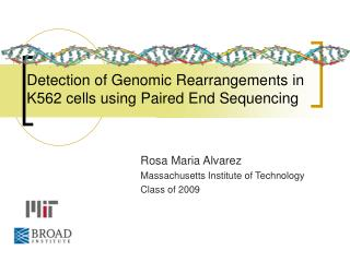 Detection of Genomic Rearrangements in K562 cells using Paired End Sequencing