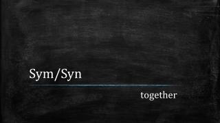 Sym / Syn