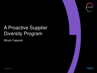 A Proactive Supplier Diversity Program