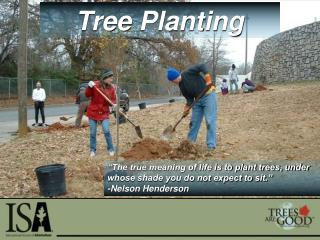 """The true meaning of life is to plant trees, under whose shade you do not expect to sit."" -Nelson Henderson"