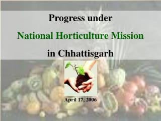 Progress under  National Horticulture Mission  in Chhattisgarh