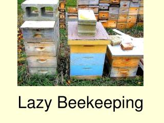 Lazy Beekeeping
