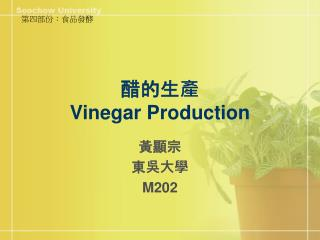 ???? Vinegar Production