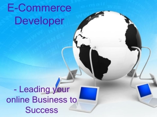 E-Commerce Developer- Leading your online Business to Succes