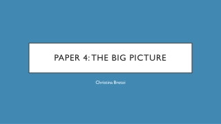 Paper 4: The Big Picture